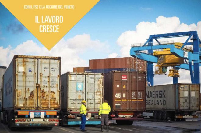 Tecnico specializzato in logistica, spedizioni e trasporti